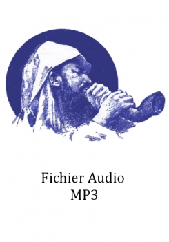 Fichier Audio MP3